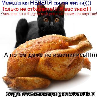 Котоматрица: Ммм,целая НЕДЕЛЯ сытой жизни)))) Только не отбирайте!!! Я вас знаю!!! Один раз вы с бодуна мой ужин со своим перепутали!(( А потом даже не извинил