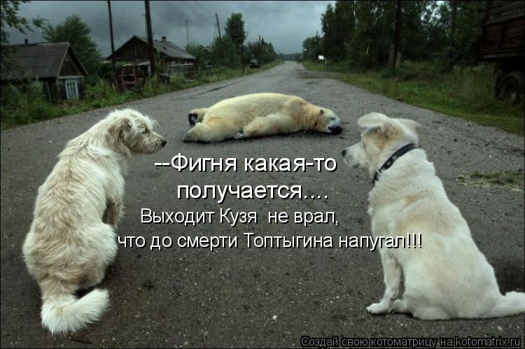 Котоматрица: --Фигня какая-то получается.... Выходит Кузя  не врал, что до смерти Топтыгина напугал!!!