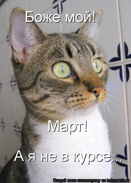 Котоматрица: Боже мой! Март! А я не в курсе...