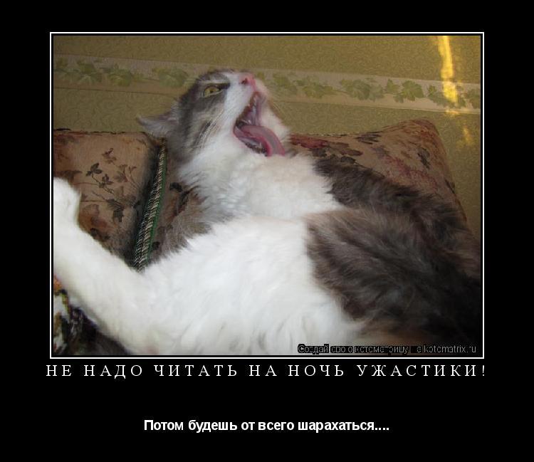 Котоматрица: Не надо читать на ночь ужастики! Потом будешь от всего шарахаться....