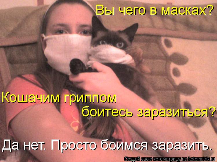 Котоматрица: Вы чего в масках?  Кошачим гриппом  боитесь заразиться? Да нет. Просто боимся заразить.