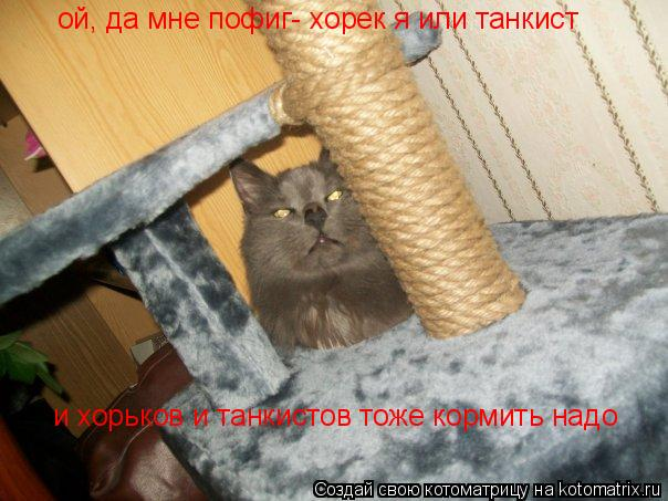Котоматрица: ой, да мне пофиг- хорек я или танкист и хорьков и танкистов тоже кормить надо