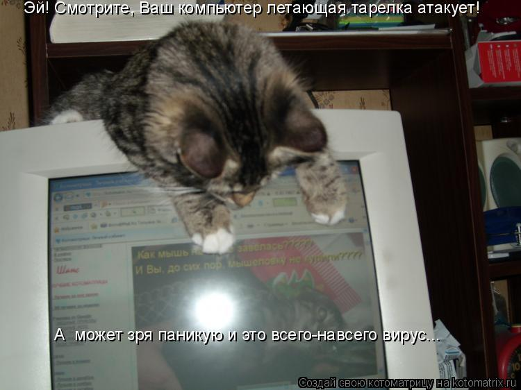 Котоматрица: Эй! Смотрите, Ваш компьютер летающая тарелка атакует! А  может зря паникую и это всего-навсего вирус...