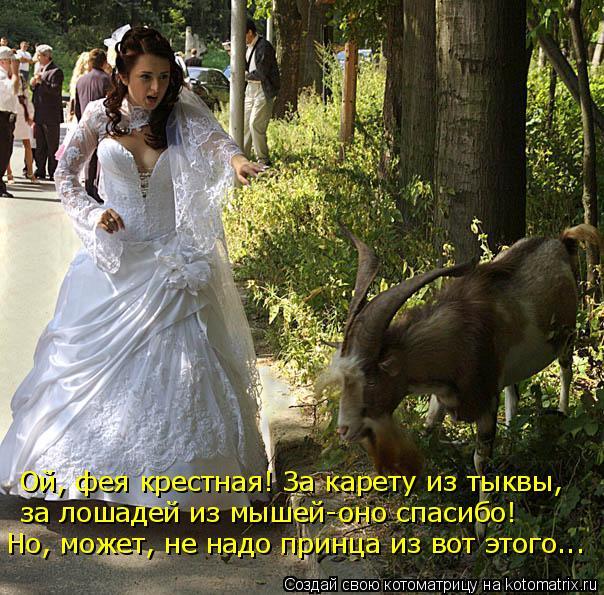 http://kotomatrix.ru/images/lolz/2010/02/21/494037.jpg