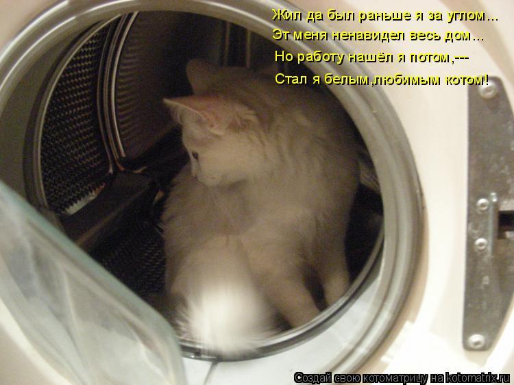 Котоматрица: Жил да был раньше я за углом... Эт меня ненавидел весь дом... Но работу нашёл я потом,--- Стал я белым,любимым котом!