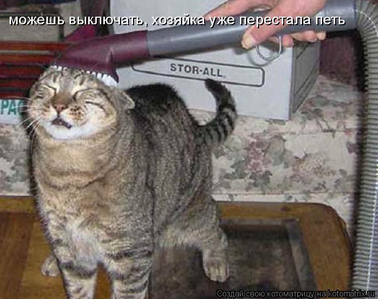 Котоматрица: можешь выключать, хозяйка уже перестала петь
