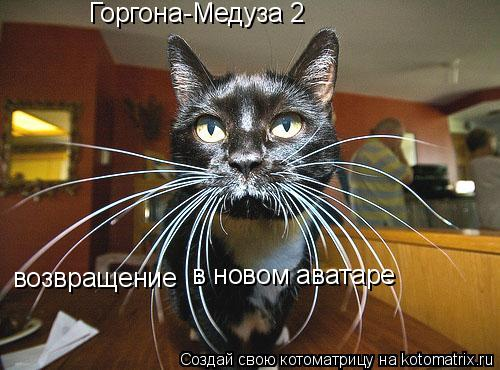 Котоматрица: Горгона-Медуза 2  возвращение в новом аватаре