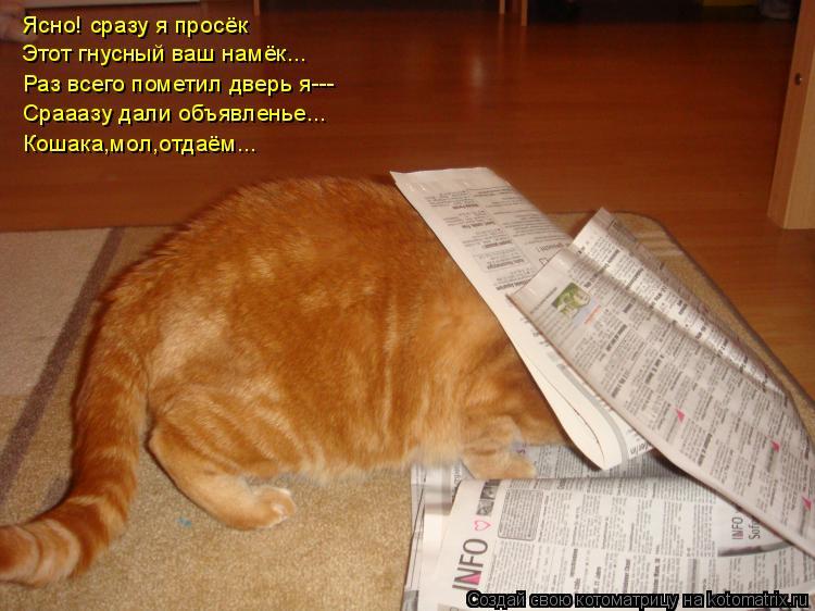 Котоматрица: Ясно! сразу я просёк Этот гнусный ваш намёк... Раз всего пометил дверь я--- Срааазу дали объявленье... Кошака,мол,отдаём...