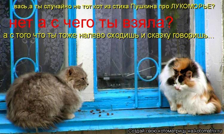 Котоматрица: вась,а ты случайно не тот кот из стиха Пушкина про ЛУКОМОРЬЕ? нет а с чего ты взяла? а с того что ты тоже налево сходишь и сказку говоришь...