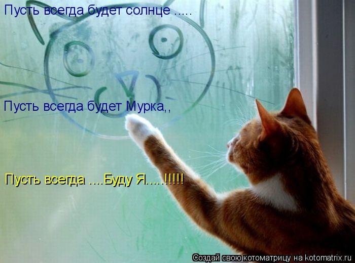 Котоматрица: Пусть всегда будет солнце ..... Пусть всегда будет Мурка,, Пусть всегда ....Буду Я.....!!!!!