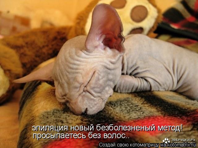 Котоматрица: эпиляция новый безболезненый метод! просыпаетесь без волос..