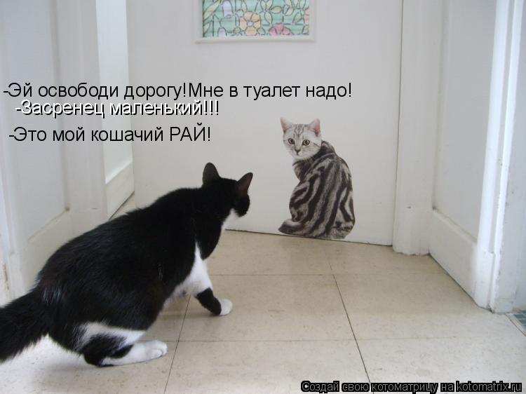 Котоматрица: -Эй освободи дорогу!Мне в туалет надо! -Засренец маленький!!! -Это мой кошачий РАЙ!