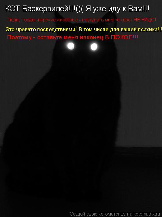 Котоматрица: КОТ Баскервилей!!!((( Я уже иду к Вам!!! Люди, лорды и прочие животные - наступать мне на хвост НЕ НАДО! Это чревато последствиями! В том числе дл