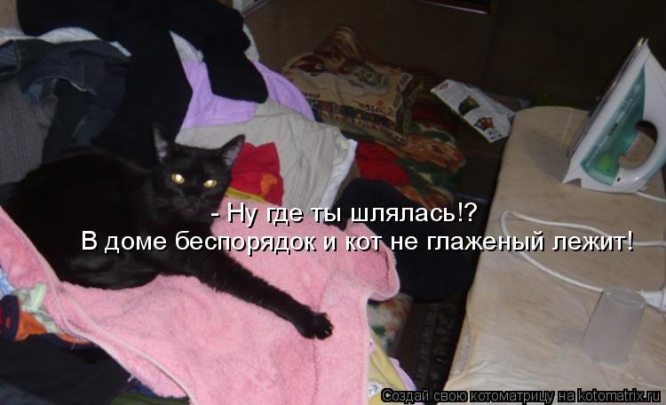 Котоматрица: - Ну где ты шлялась!?  В доме беспорядок и кот не глаженый лежит!