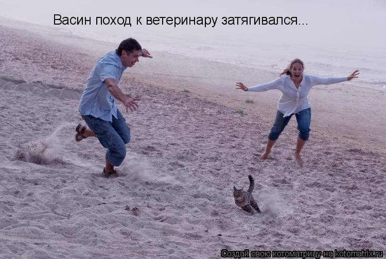 Котоматрица: Васин поход к ветеринару затягивался...