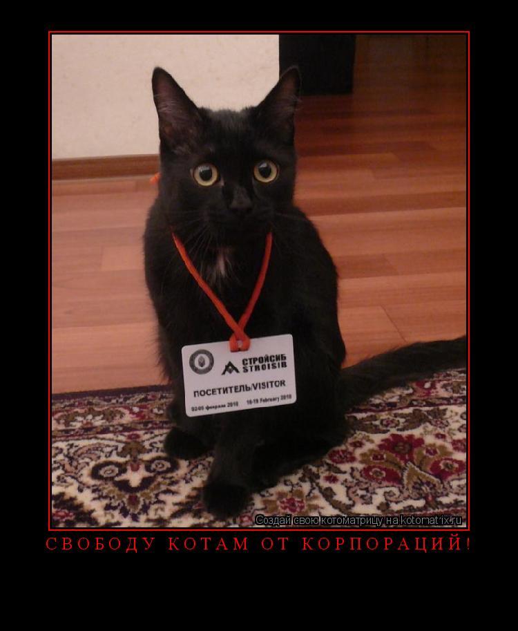 Котоматрица: Свободу котам от корпораций!
