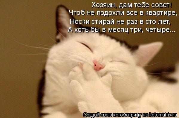 http://kotomatrix.ru/images/lolz/2010/02/23/496138.jpg