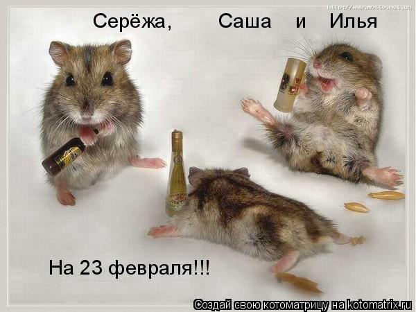 Котоматрица: Серёжа,        Саша    и    Илья На 23 февраля!!!