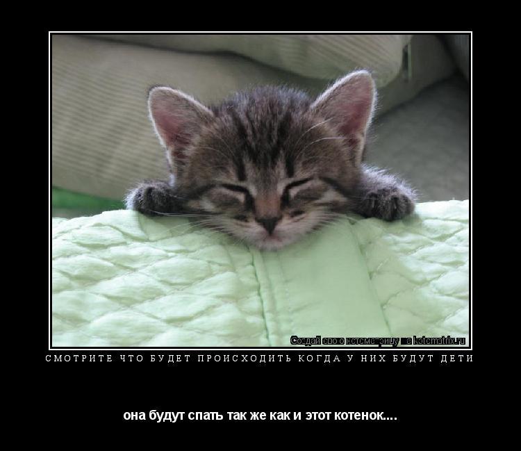 Котоматрица: смотрите что будет происходить когда у них будут дети она будут спать так же как и этот котенок....