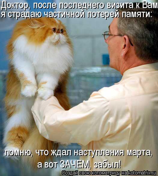 Котоматрица: Доктор, после последнего визита к Вам я страдаю частичной потерей памяти: помню, что ждал наступления марта,  а вот ЗАЧЕМ, забыл!