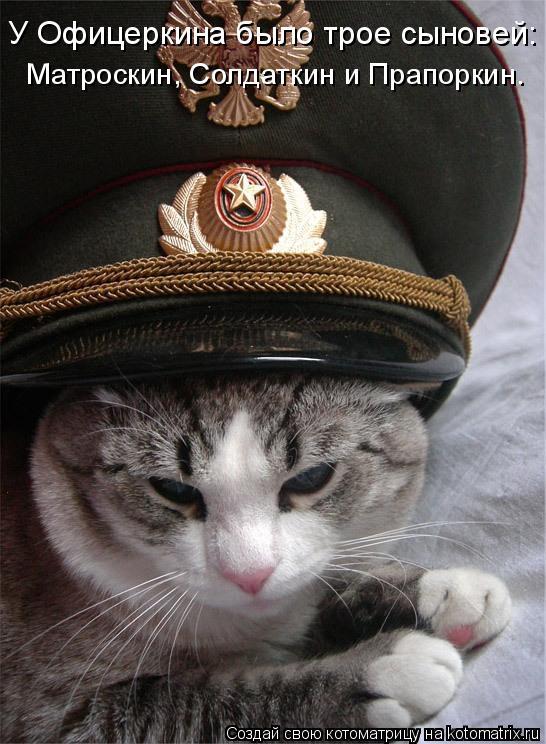 Котоматрица: У Офицеркина было трое сыновей: Матроскин, Солдаткин и Прапоркин.