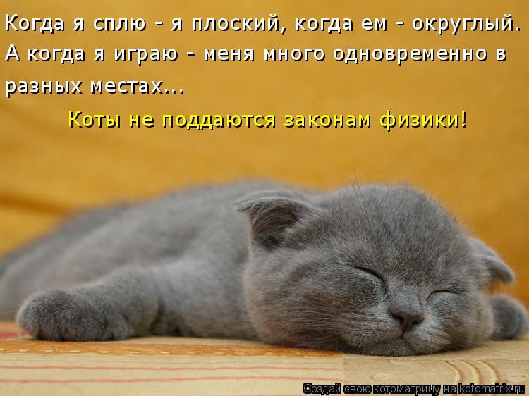 http://kotomatrix.ru/images/lolz/2010/02/24/496510.jpg