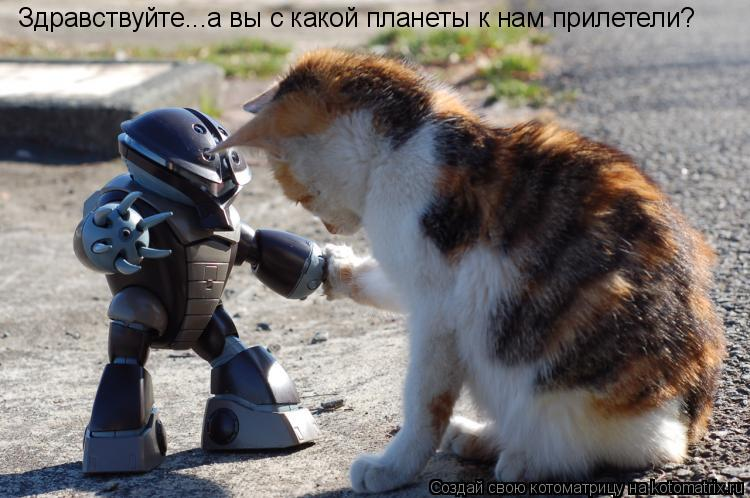 Котоматрица: Здравствуйте...а вы с какой планеты к нам прилетели?