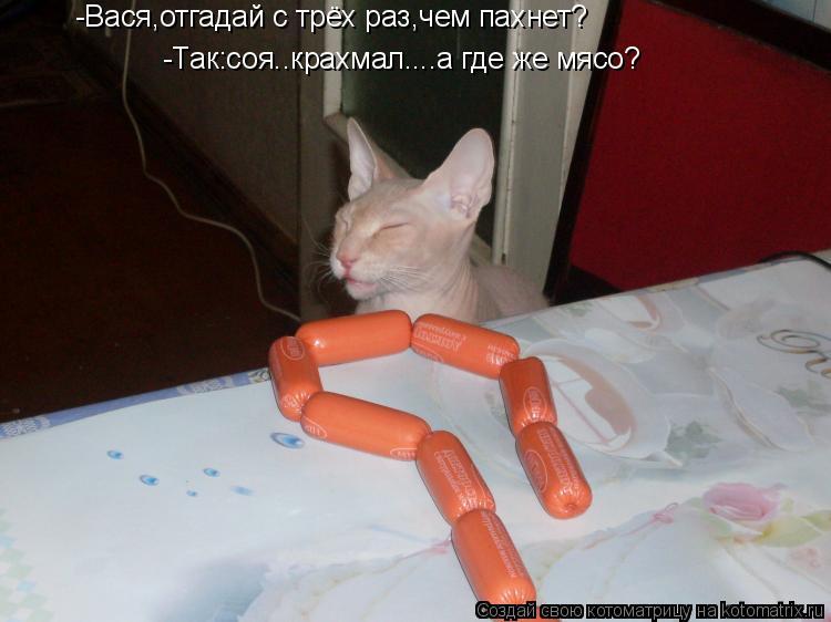 Котоматрица: -Вася,отгадай с трёх раз,чем пахнет? -Так:соя..крахмал....а где же мясо?