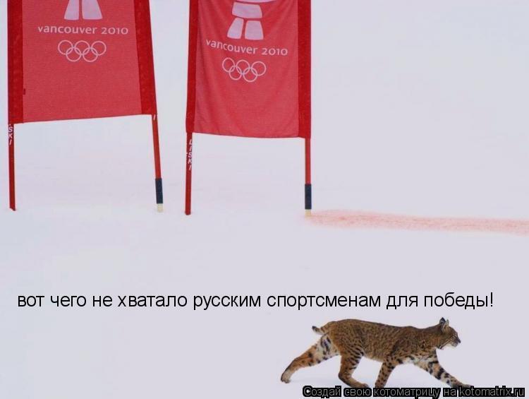 Котоматрица: вот чего не хватало русским спортсменам для победы!