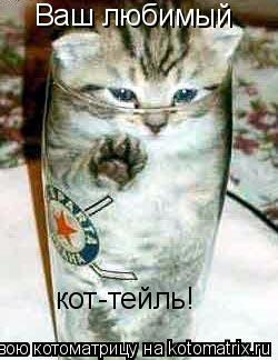 Котоматрица: Ваш любимый кот-тейль!