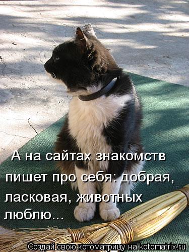 Котоматрица: А на сайтах знакомств  пишет про себя: добрая,  ласковая, животных люблю...