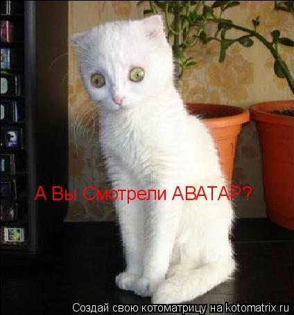 Котоматрица: А Вы Смотрели АВАТАР?