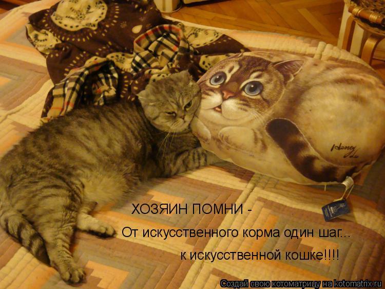 Котоматрица: От искусственного корма один шаг...  ХОЗЯИН ПОМНИ -  к искусственной кошке!!!!