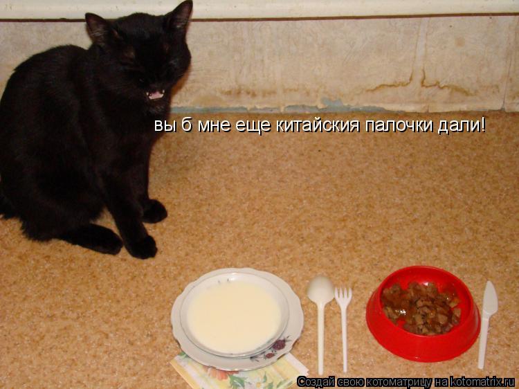 Котоматрица: вы б мне еще китайския палочки дали!