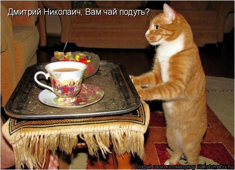 Котоматрица: Дмитрий Николаич, Вам чай подуть?
