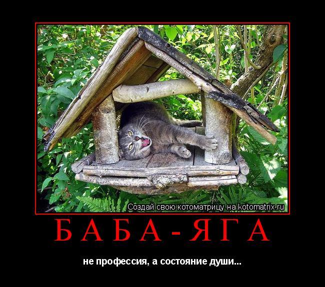 Котоматрица: Баба-Яга не профессия, а состояние души...