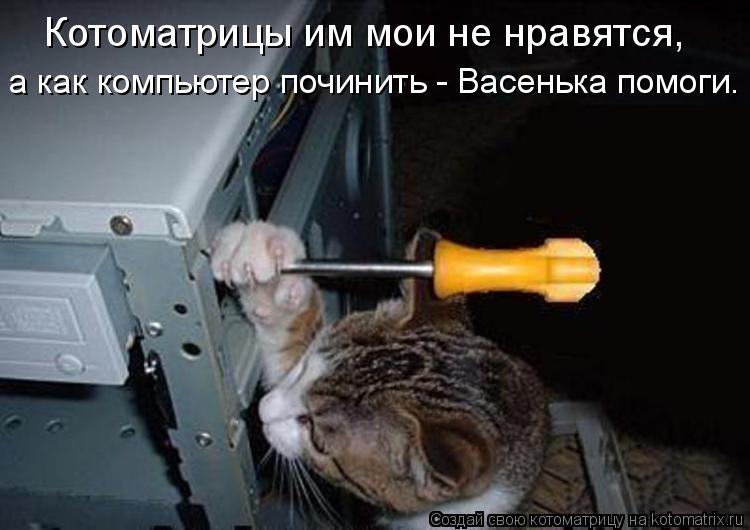 Котоматрица: Котоматрицы им мои не нравятся, а как компьютер починить - Васенька помоги.