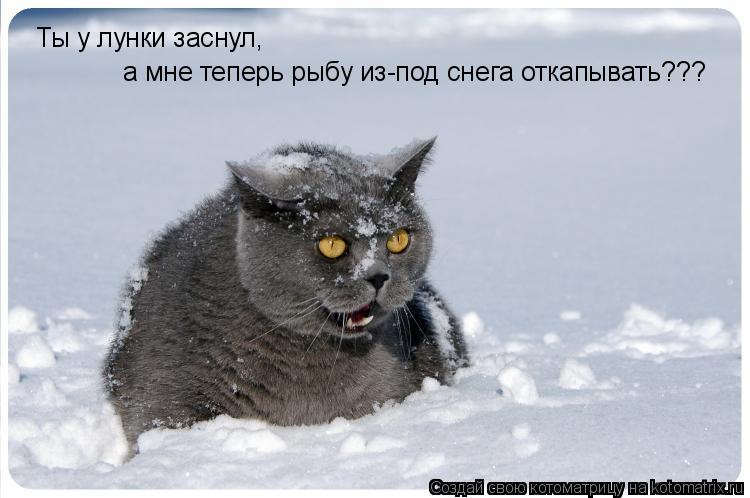 Котоматрица: Ты у лунки заснул, а мне теперь рыбу из-под снега откапывать???