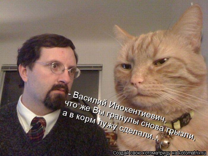 Котоматрица: - Василий Инокентиевич, что же Вы гранулы снова грызли, а в корм лужу сделали...