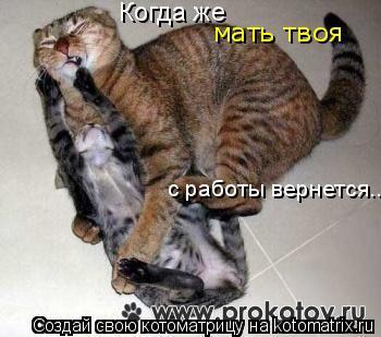 Котоматрица: Когда же  с работы вернется... мать твоя