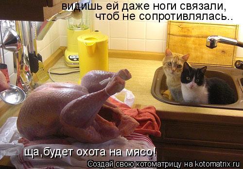 Котоматрица: видишь ей даже ноги связали, чтоб не сопротивлялась.. ща,будет охота на мясо!