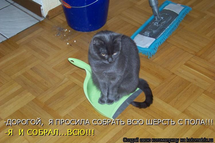 http://kotomatrix.ru/images/lolz/2010/02/26/498900.jpg