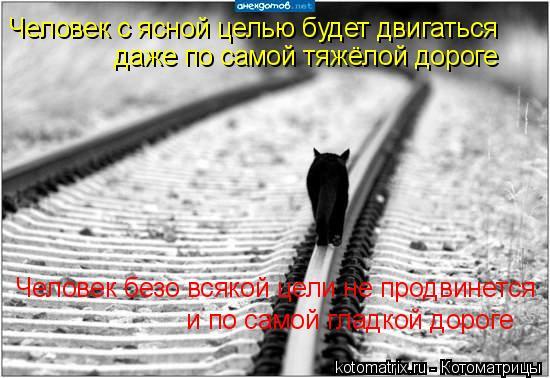 Котоматрица: Человек с ясной целью будет двигаться  даже по самой тяжёлой дороге Человек безо всякой цели не продвинется и по самой гладкой дороге