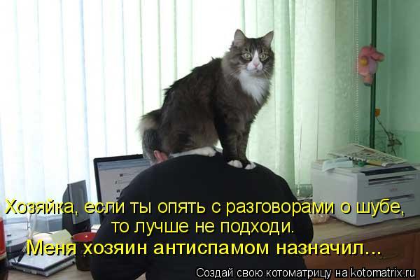 http://kotomatrix.ru/images/lolz/2010/02/26/498989.jpg