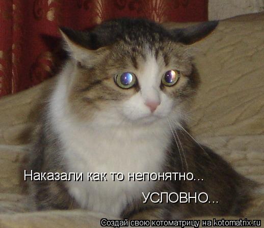 Котоматриця!)))) - Страница 3 499132