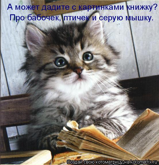 Котоматрица: А может дадите с картинками книжку? Про бабочек, птичек и серую мышку.