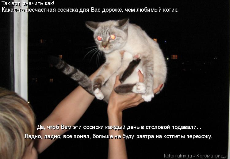 Котоматрица: Так вот, значить как!  Какая-то несчастная сосиска для Вас дороже, чем любимый котик. Ладно, ладно, все понял, больше не буду, завтра на котлет