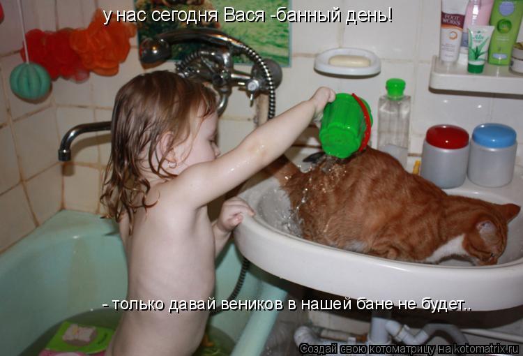 Котоматрица: у нас сегодня Вася -банный день! - только давай веников в нашей бане не будет..