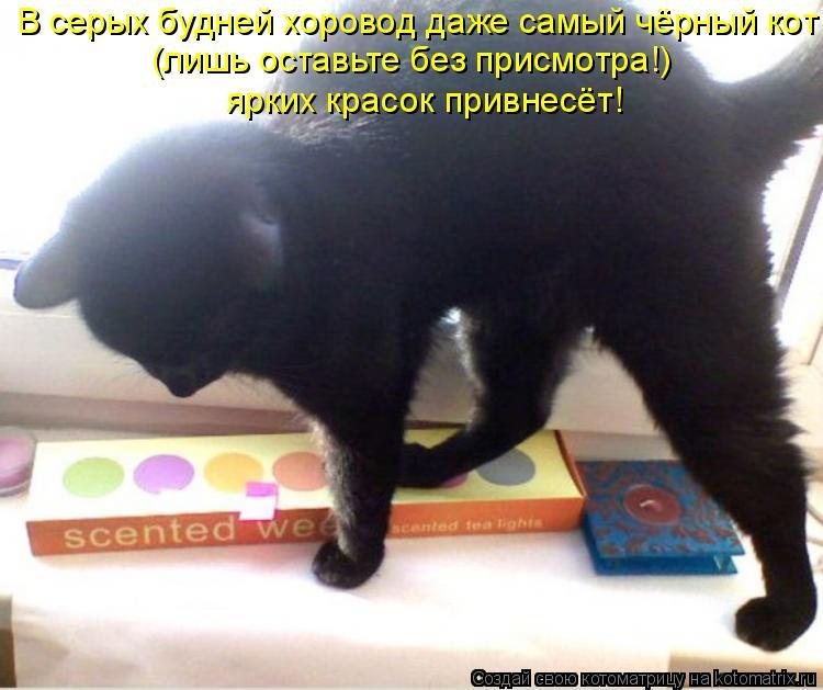 http://kotomatrix.ru/images/lolz/2010/02/28/500401.jpg