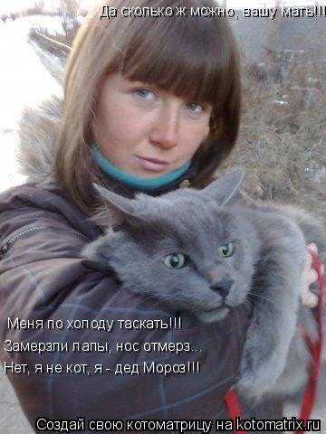 Котоматрица: Да сколько ж можно, вашу мать!!! Меня по холоду таскать!!! Замерзли лапы, нос отмерз... Нет, я не кот, я - дед Мороз!!!